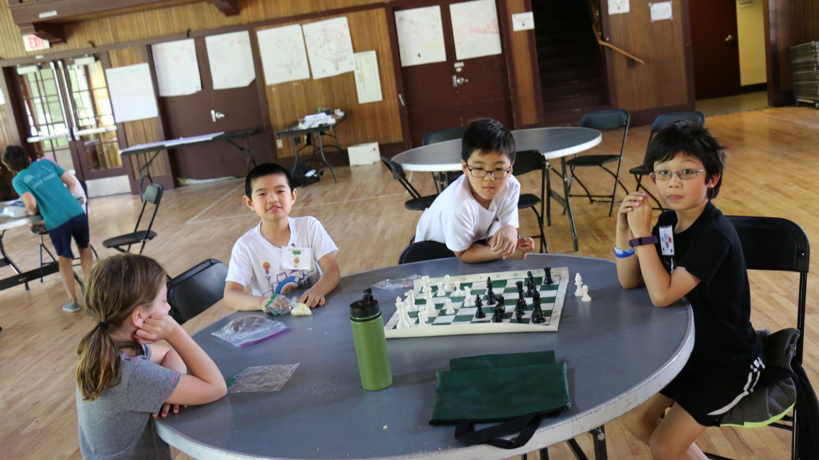 Check: Chess for Beginners